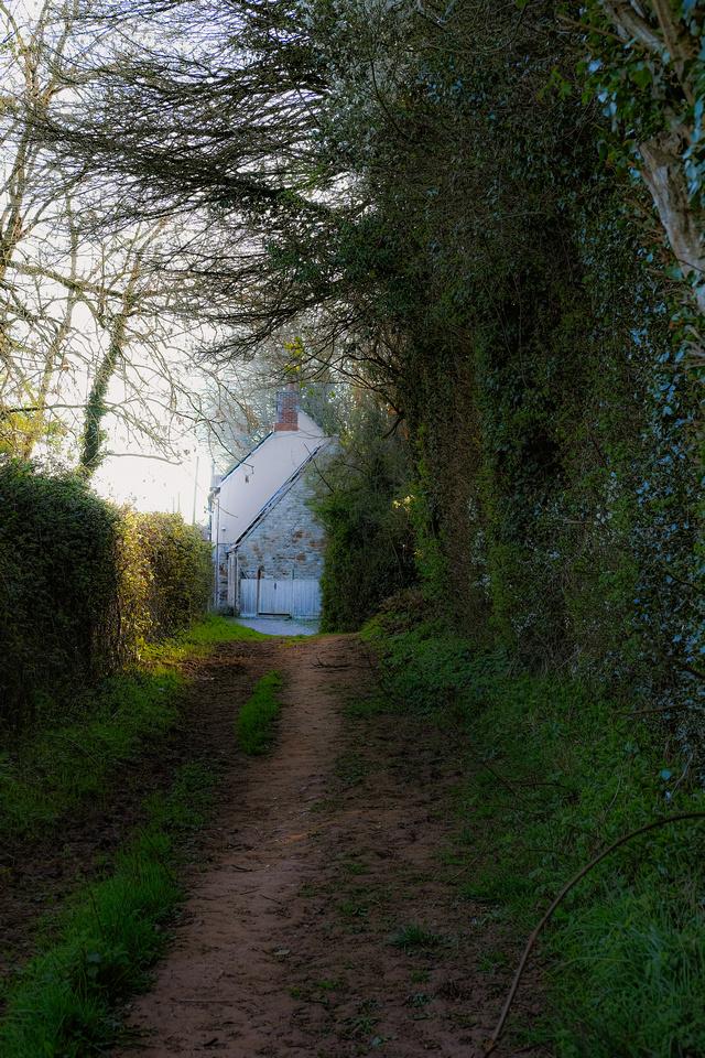 A house around a footpath in Long Ashton