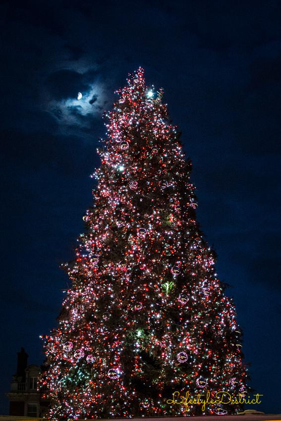 Lifestyle District | Bristol culture & photography blog: Christmas Lights London '15 &emdash; DSC_5292